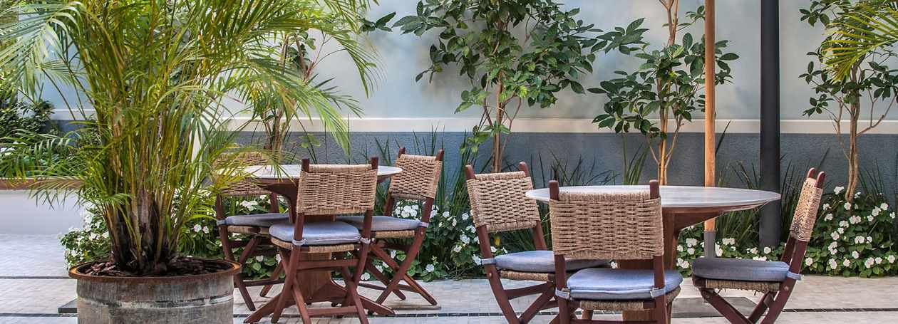 החצר והגינה במלון